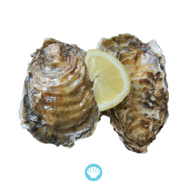 10.ostras(1u.)